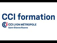 logo CCI Lyon