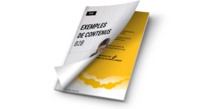 book exemple contenus B2B